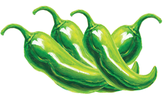 illustration of hatch chiles