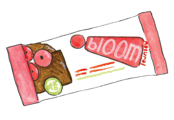 Bloom Natural Foods Bars